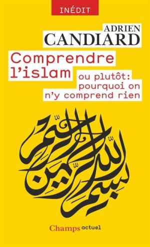 Comprendre L Islam Ou Pourquoi On N Y Comprend Rien Livre D